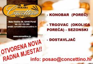 NOVA RADNA MJESTA_ISPUNITI_2602